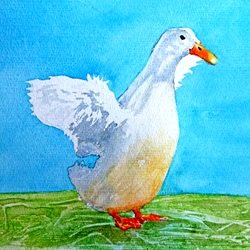 art duck birds animals dad son  granddad  uncle mum daughter Nan aunt friend personalised online greeting card