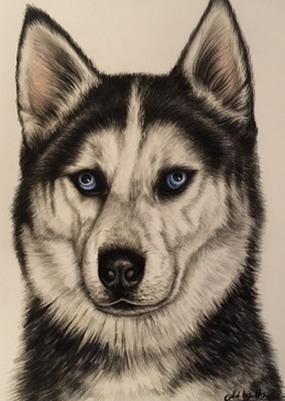 Art Husky dogs for-him for-her pets animals  personalised online greeting card