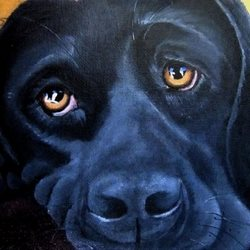 Art Labrador, Dogs, Black, face, portrait, eyes, pets. personalised online greeting card