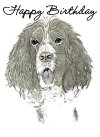 Birthday  greeting cards by Lizzy'sCardsLTD dogs animals  z%a dog birthday