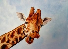 art general giraffe  animals wildlife personalised online greeting card