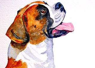 General artwork boxer dog animals pets for-her for-him personalised online greeting card