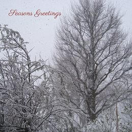 Christmas snow winter gardens  personalised online greeting card