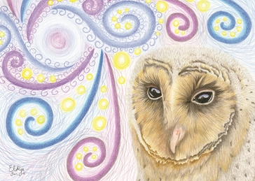 art general stargazer, barn owl, owl, black barn owl, for her, for him, birthday, mothers day, easter, fathers day, sympathy, sorry personalised online greeting card