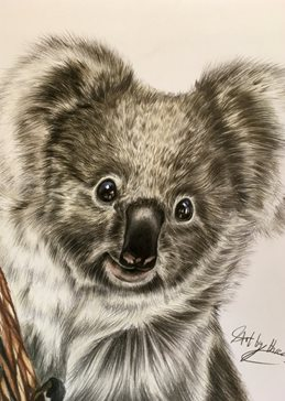 art koalas bears animals wildlife safari zoon australia cute kids mums dads all occasions  for-him for-her for-child personalised online greeting card