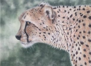 Art Cheetah wildlife animal nature personalised online greeting card