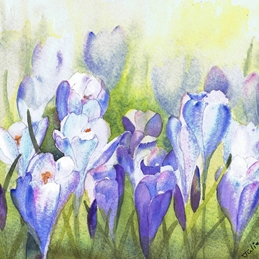 General flower, crocus, spring, purple, floral, spring flower personalised online greeting card
