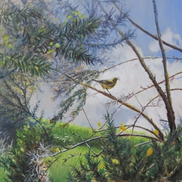 art  greeting cards by Little Liz Happy Art bird, nature, blue sky, gorse, yellow, green, for-him, for-her Little Bird