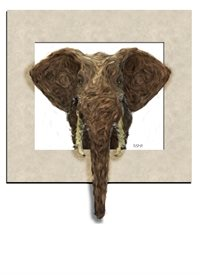 General elephant framed painted wild animals personalise personalised online greeting card