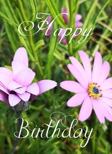 birthday female,, flower pink, happy birthday personalised online greeting card