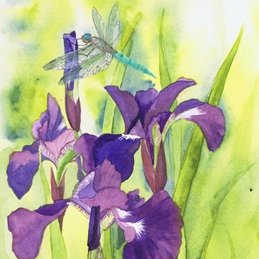 General dragonfly, irises, purple, flowers, floral personalised online greeting card