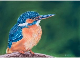 art general kingfisher bird wildlife personalised online greeting card