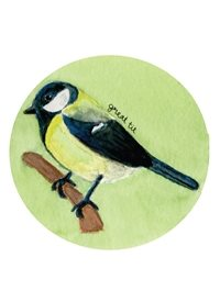 General Great tit birds wildlife nature garden birds English British birds Thank you cards blank cards personalised online greeting card