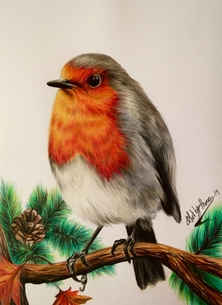 Art By Three  Robin robin, birds, redbreast, christmas, wildlife, animals personalised online greeting card