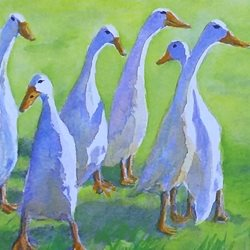 General artwork geese ducks wildlife birds for-him for-her  personalised online greeting card