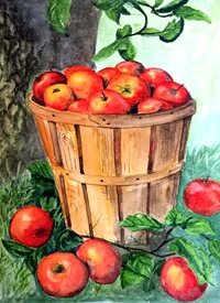 Art apples barrel fruit food grass personalised online greeting card