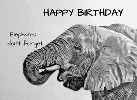 General artwork elephant animal wildlife zoo monochrome for-her for-him personalised online greeting card