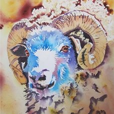art Sheep, Ram, Horns, Animals, Farm, Golden personalised online greeting card