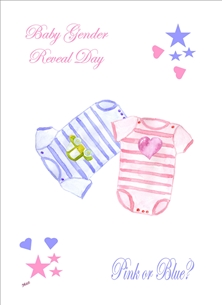 Baby Gender Reveal Baby-gro Boy Girl Pink Blue White for-her Wholesale  personalised online greeting card