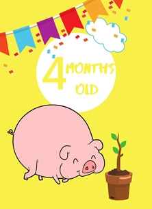 Her Nibs  Kids Milestone (Animals)  Pig,Banner,Milestone 4 months,Colourful,Plant, personalised online greeting card