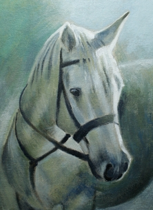 Art Cormack II painting art portrait horse horses personalised online greeting card