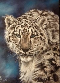 Art By Three  Snow Leopard art snow leopards  nature wildlife  blue animals for-him for-her for-child big cats zoos stripes fur white blue zoos oils  general blank all occasions art him her  personalised online greeting card