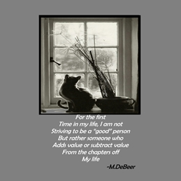 General cat,window,poetry,grey personalised online greeting card