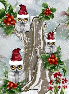 Christmas  greeting cards by Little Bird Greetings Cards Christmas holly Snowy Owls