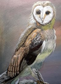 JennyGardnerArt A Pensive Owl art owl, Nature,  animals z%a personalised online greeting card