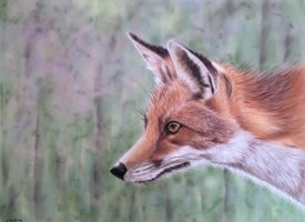 General art Fox wildlife animal personalised online greeting card