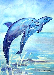 General art artwork dolphins animals wildlife water sea for-him for-her for-children personalised online greeting card