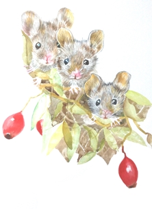 Three little mice