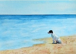 General artwork dog animals pets sea beach for-her for-him personalised online greeting card