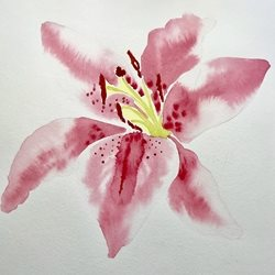 Art Lily pink watercolour painting flower  personalised online greeting card