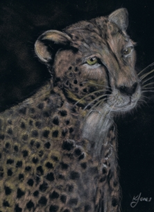 Karen J Jones Cheetah portrait in Pastels Art Cheetah, Big 5 five, African big cat, wild animal, Birthday card, for him, for her, general greetings, conservation, endangered species personalised online greeting card