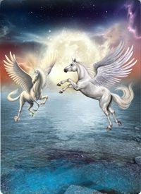 General Mystical, happy, unicorns, midnight, starry sky, adventure personalised online greeting card