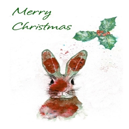 Hare and Holly Christmas Card