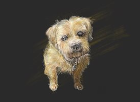 Art Dog animals z%a personalised online greeting card