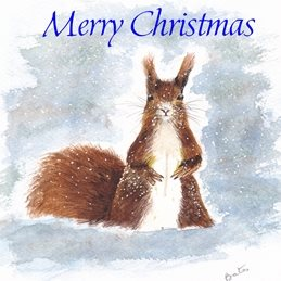 Christmas  Squirrel in snow personalised online greeting card