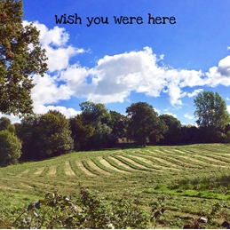 photography missing Countryside summer fields haymaking Farm personalised online greeting card