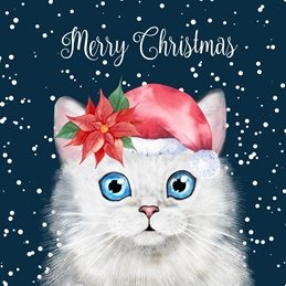 Christmas Cat, Persian, White, Snow,  personalised online greeting card