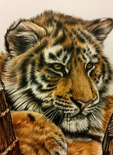 Art By Three  Tiger Cub Art tiger cub animals cats wildlife for-her for-kids for-him  personalised online greeting card