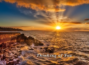 Evening Gold - Thinking of You