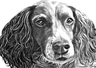 art dog animals pet dad son  granddad friend uncle mum daughter Nan aunt  personalised online greeting card