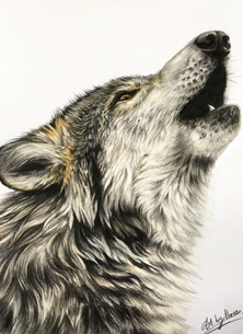 Art By Three  Howling Wolf howling wolf wolves animals wildlife for-him for-her birthday all occasions  personalised online greeting card