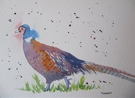 art Pheasant, wild birds, wild fowl, countryside, fields, running, animals personalised online greeting card