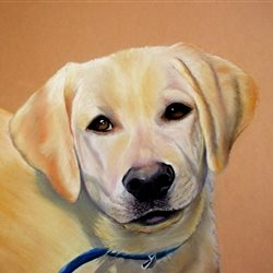 Art dog animals pet labrador dad son  granddad  uncle mum daughter Nan aunt friend personalised online greeting card