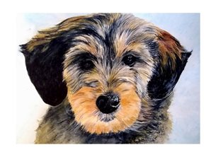 art general dog animals pets brown black white   mum dad son daughter Nan granddad friend aunt uncle personalised online greeting card