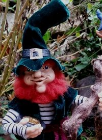 General Leprechaun, Magic Enchantment wizards gnomes elves faerie  personalised online greeting card