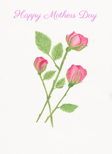 SJB Cards Pink Roses Mothers Mothers Day flowers personalised online greeting card